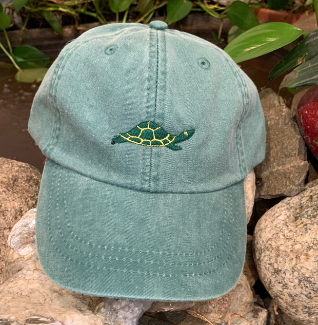Diane the Turtle Embroidered Turtle Adult Hat Green One Size Fits All