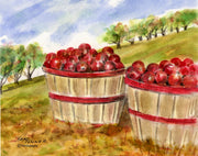 Baskets of Apples Note Cards
