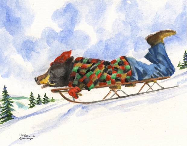 Bear Sledding Note Cards