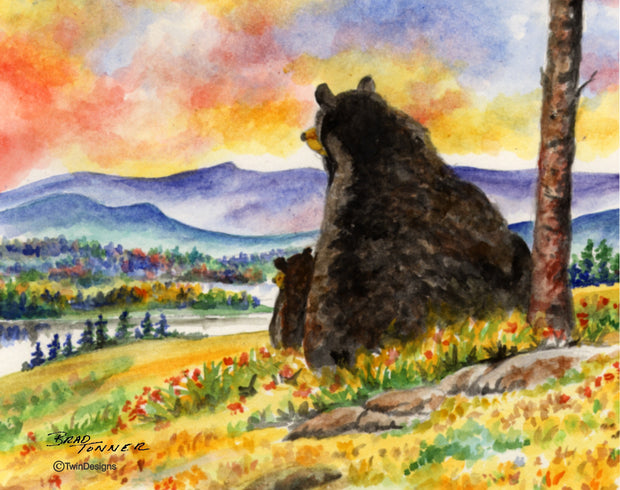 Bear Sunset Note Cards