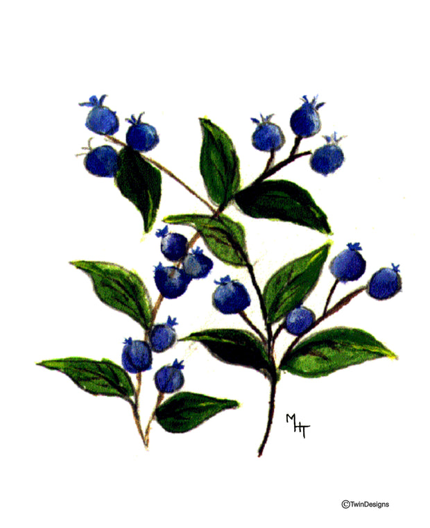 Blueberry Note Cards