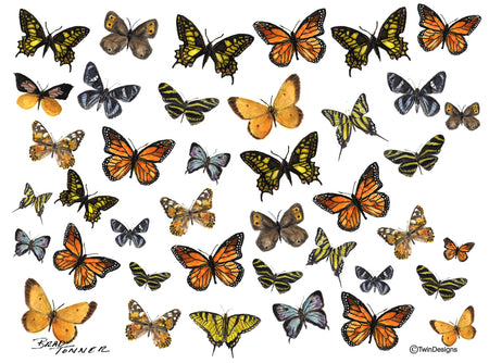 Butterfly Collage Note Cards