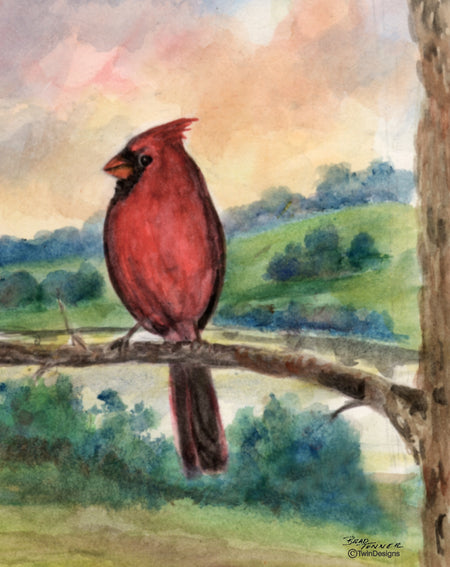 Summer Cardinal Note Cards