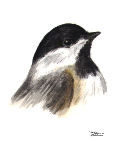 Chickadee Note Cards