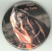 Diane the Turtle Button