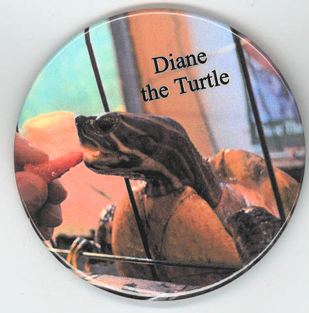 Diane the Turtle eating a strawberry button