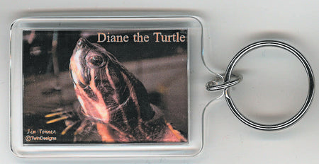 Diane the Turtle Key Chain