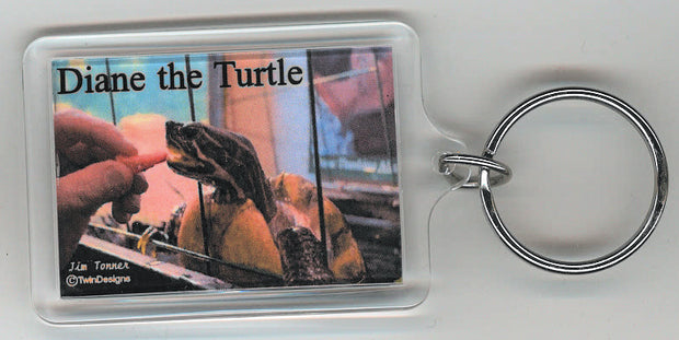 Diane the Turtle Eating Strawberry Key Chain