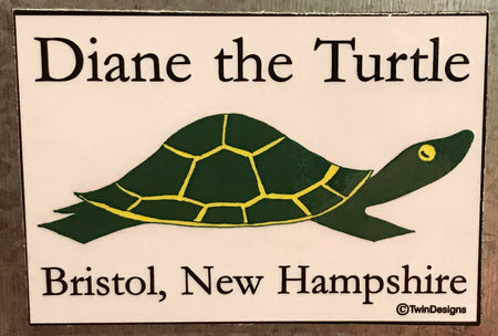 Diane the Turtle Logo Magnet