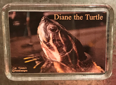 Diane the Turtle Lucite Magnet