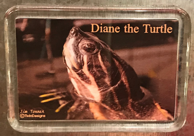Diane the Turtle Large Lucite Magnet