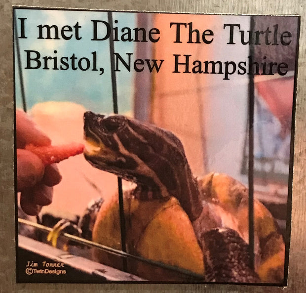 I Met Diane the Turtle Magnet