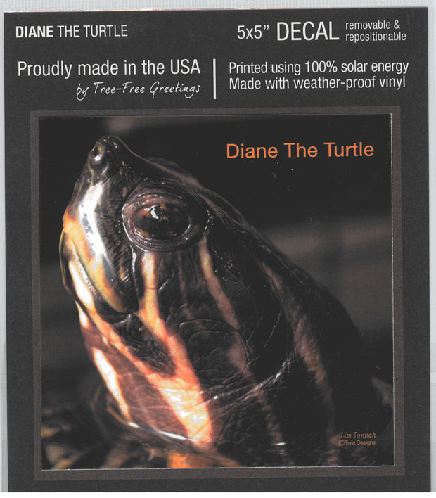 Diane the Turtle Decal