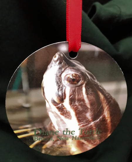 Diane the Turtle Metal Ornament