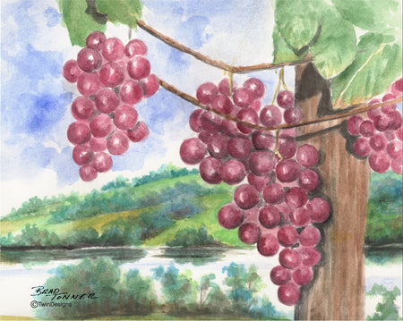 Grapes Note Cards