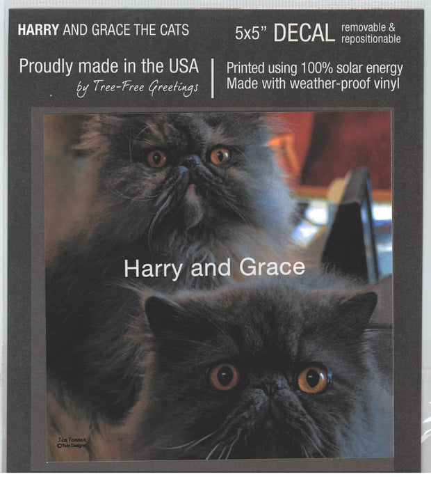 Harry and Grace the Cats Decal