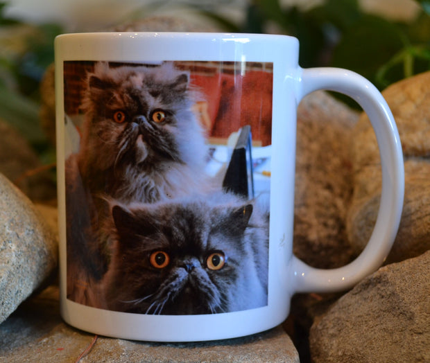 Harry and Grace the Cats Mug