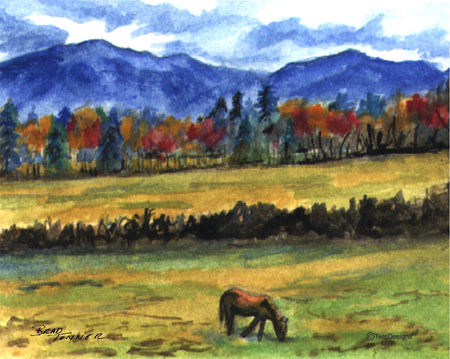 Horse in the Mountains Note Card