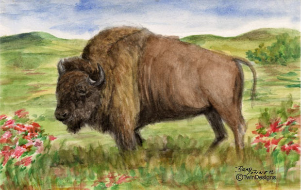 """Where the Buffalo Roam"" Note Cards Original Watercolor by Brad Tonner"
