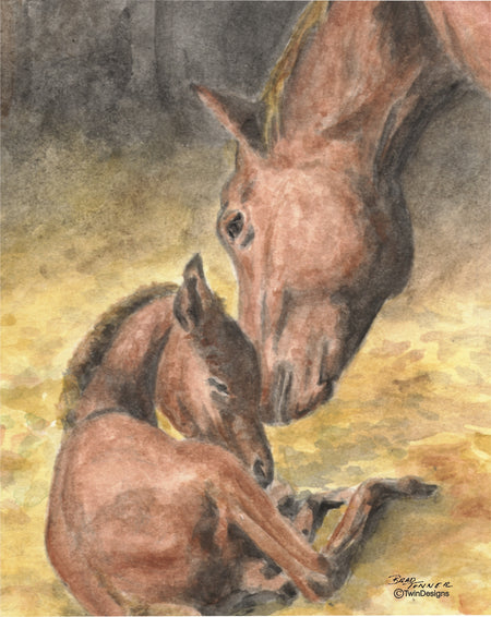 Mare and Colt Note Cards