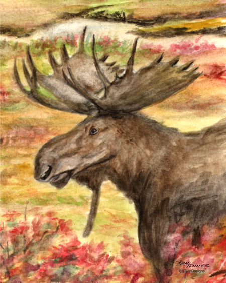 Moose Note Cards