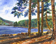 Wellington Newfound Lake Note Cards