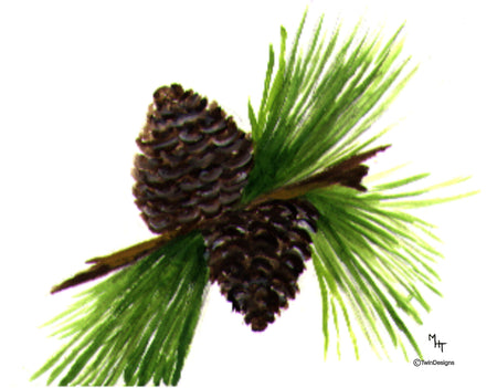 Pine Cone Note Cards