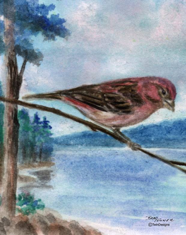 Purple Finch Note Cards