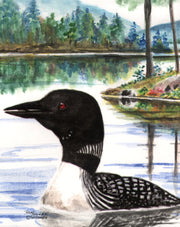 Summer Loon Note Cards