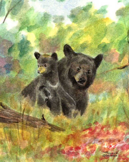 Two Bears Note Cards