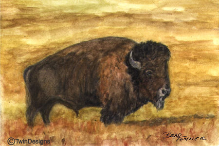 """Buffalo"" Note Cards Original Watercolor by Brad Tonner"