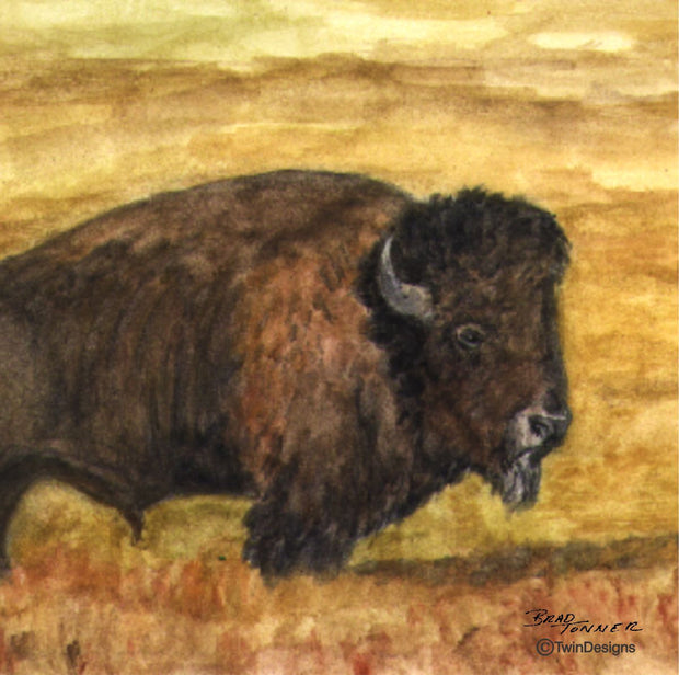 """Buffalo"" Ceramic Trivet Original Watercolor by Brad Tonner"