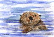 """Otter"" Note Cards Original Watercolor by Brad Tonner"