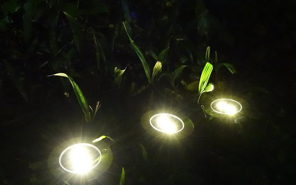 Pack of 3 x solar powered LED light
