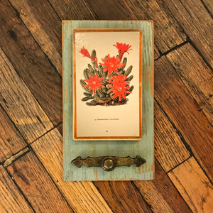 Cactus Bloom Rustic Hanger