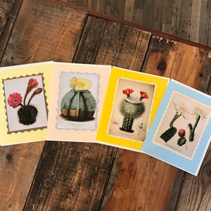 Botanical Cactus Cards