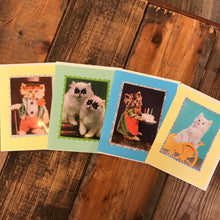 Crazy Cats Cards