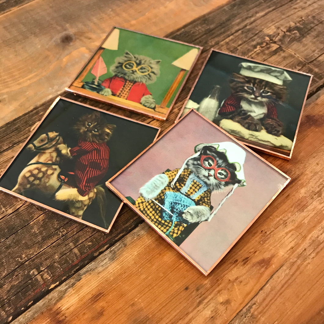 Kittens Coaster Set