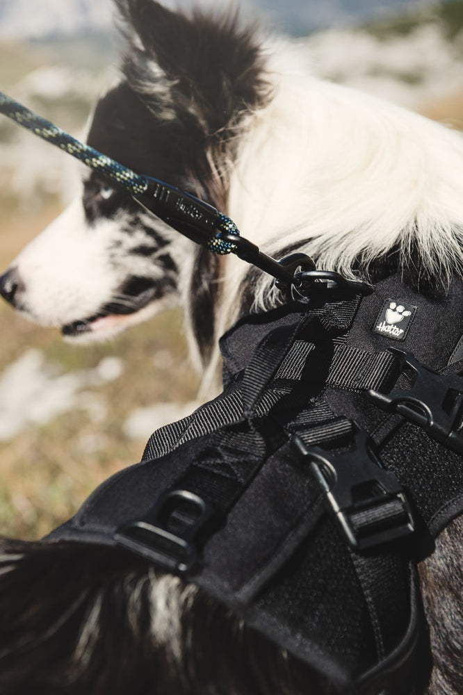 Hurtta Trail Pack