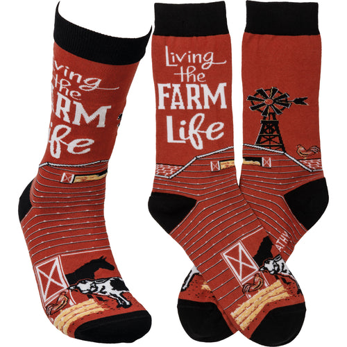Socks - Living The Farm Life