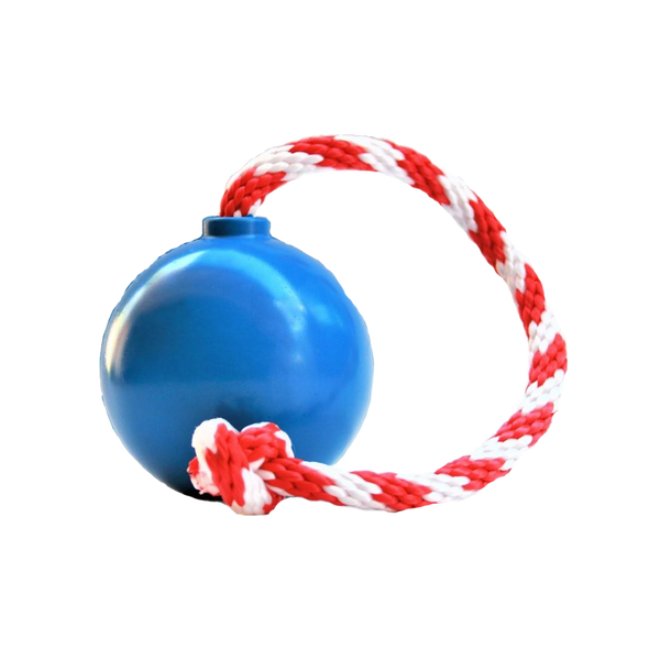 IQ Rope Ball Treat Dispensing Pig Toy