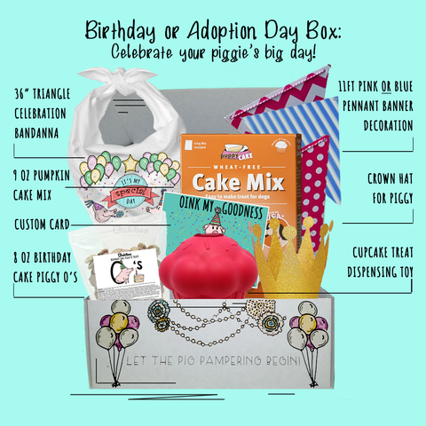 OinkBox pig birthday adoption day box