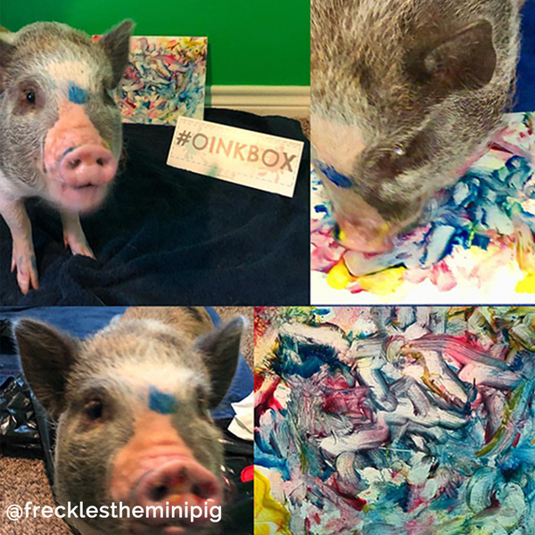 3 Piece Snoot Art Piggy Paint Kit