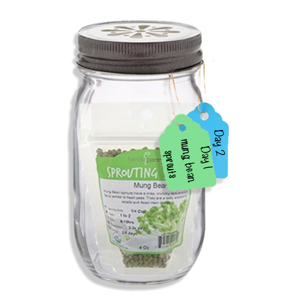 Sprouting Jar Kit