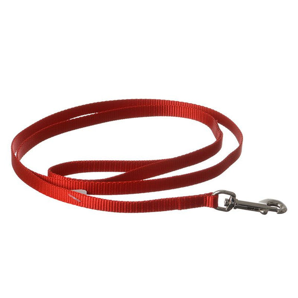 Coastal Pet Nylon Lead - Red