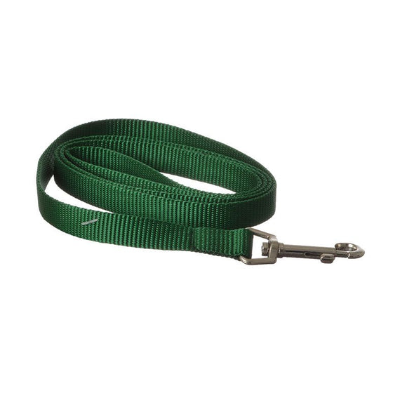 Coastal Pet Nylon Lead - Hunter Green