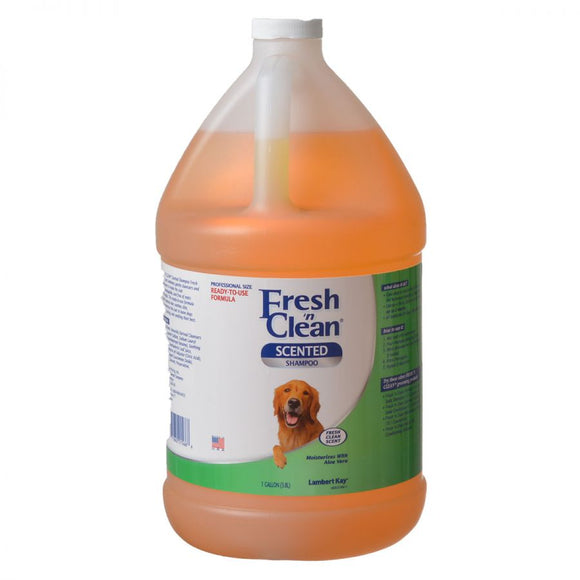 Fresh 'n Clean Scented Shampoo with Protein - Fresh Clean Scent