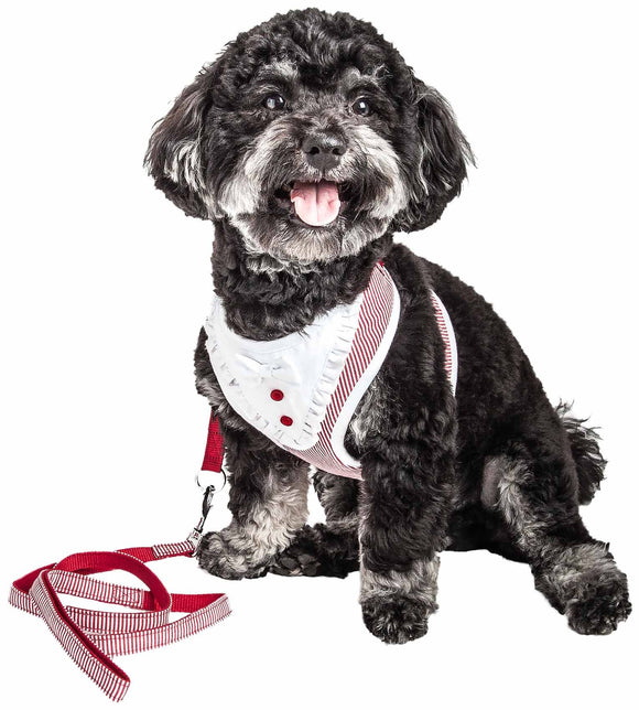 Pet Life ?? Luxe 'Spawling' 2-In-1 Mesh Reversed Adjustable Dog Harness-Leash W/ Fashion Bowtie - Yip & Purr?? Official Website