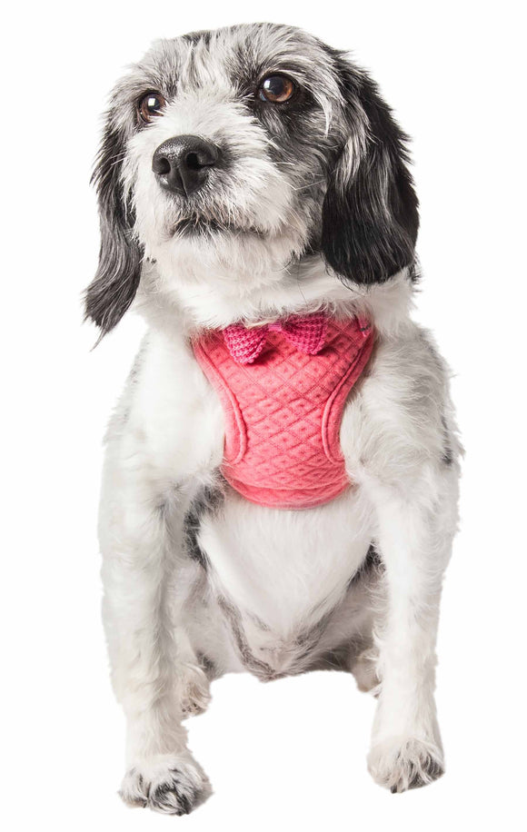Pet Life ?? 'Flam-Bowyant' Mesh Reversible And Breathable Adjustable Dog Harness W/ Designer Bowtie - Yip & Purr?? Official Website