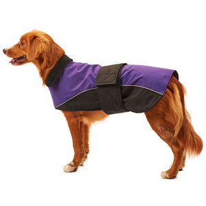 Fashion Pet Waterproof Reflective Dog Coat - Yip & Purr® Official Website
